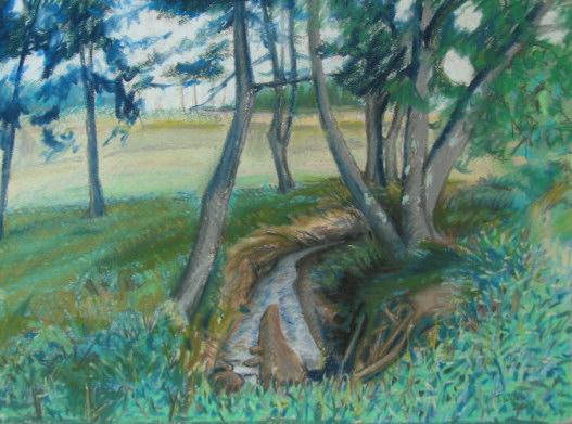Bend in creek